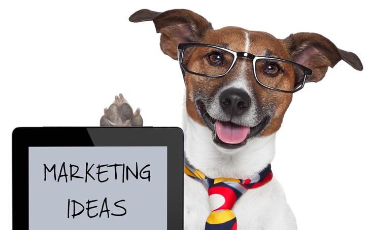 Állati marketing, amikor a cukiság hoz eredményeket